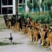 Como ter confiança em qualquer lugar