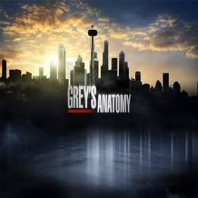 Divulgado trailer da 12ª Temporada de Grey�s Anatomy
