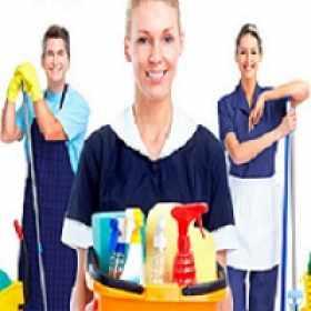 Empregado domestico e seu verdadeiro significado