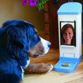 ICPooch permite vídeo chat com o seu cão ou gato