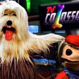 Tv Colosso, o sucesso canino na década de 90